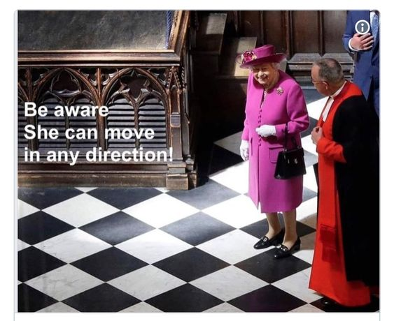 Pin By Sky Goddess On Political Animals In 2021 Queen Elizabeth Memes Chess Queen History Memes