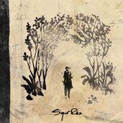 "Sigur Rós album ""Takk"" (2005). my favorite song ""hoppípolla"""