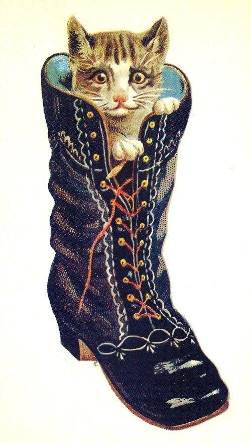 vintage cat: