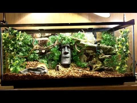 ball python awesome terrarium setup hd youtube reptiles and amphibians pinterest python. Black Bedroom Furniture Sets. Home Design Ideas