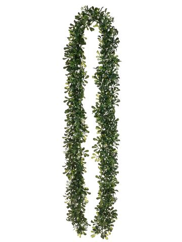 DEAL OF THE DAY 89 Boxwood Garland Only 1059 Httpwwwafloralcom