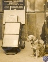 BELMAL - the history log of steamer trunk and luggage manufacturers (world)