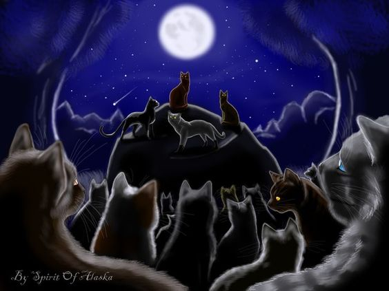 Fourtrees Warrior Cats