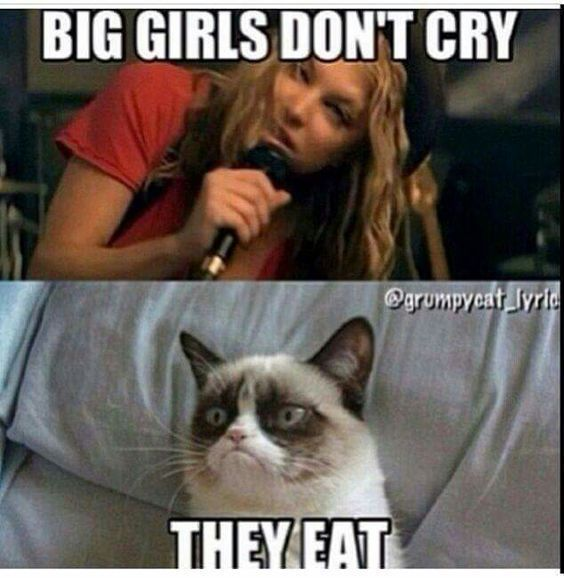 These Adorable Cats Will Bring You Joy Cats Are Fascinating Companions Cataesthetic Funny Grumpy Cat Memes Angry Cat Memes Grumpy Cat Quotes