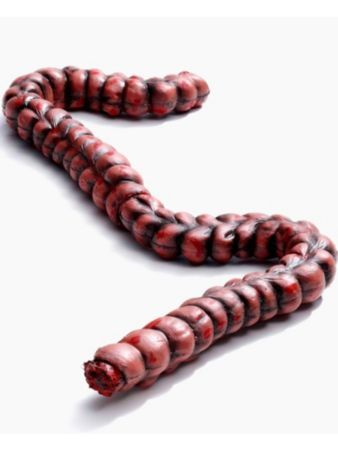 bloody zombie small intestine prop halloween decorations at frightcatalog com - Fright Catalog Halloween Decorations