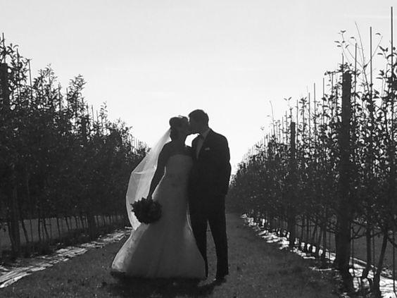Cincola Wedding November 2012