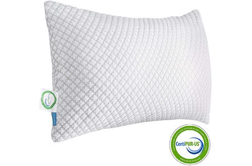 Pin On Top 10 Best Shredded Memory Foam Pillows Reviews