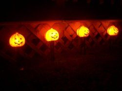 Pumpkin yard Lights