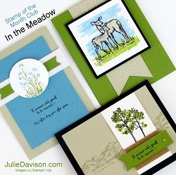 Stampin' Up! In the Meadow Card Kit for Stamp of the Month Club #stampinup 2016 Occasions Catalog www.juliedavison.com/clubs