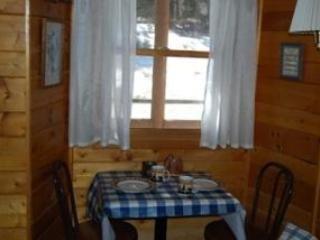 Cozy 1 bedroom Cabin in Estes Park - Estes Park vacation rentals