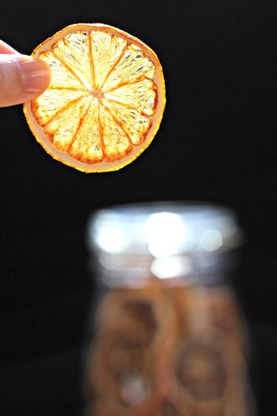 Dehydrated Meyer Lemon Slice | Oysters & Pearls