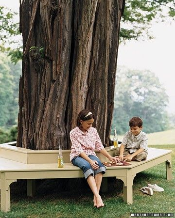 Neat bench around a large tree trunk