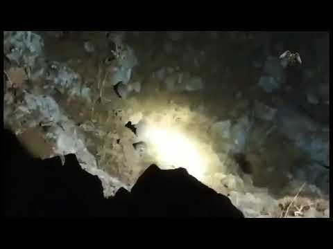 صيد حجل قبج قهد شنار ليلي من Behroz Oramari Youtube Celestial Outdoor Celestial Bodies