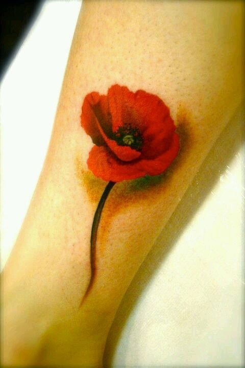 http://tattoomagz.com/orange-and-red-poppies-tattoos/3d-style-poppies-tattoo/
