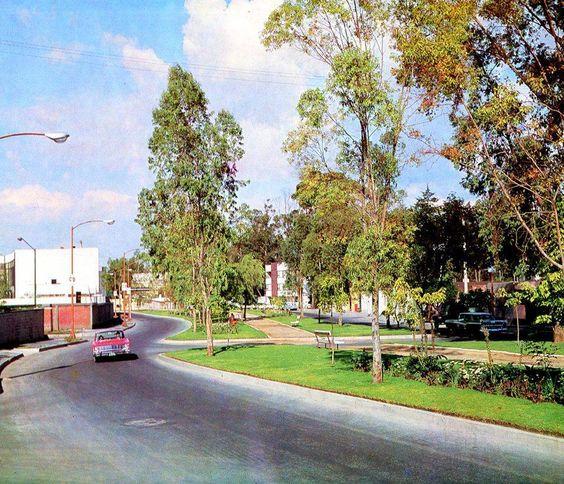 La avenida Barranca del Muerto a la altura de la calle de Mosqueta, en los límites de las colonias Crédito Constructor y Florida, hacia 1964. El edificio que se ve al centro de la foto aún existe, y a la izquierda hoy se encuentra el Centro Libanés.   Imagen: DDF