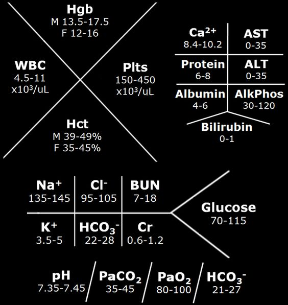 Med student things for your iphone lockscreen...
