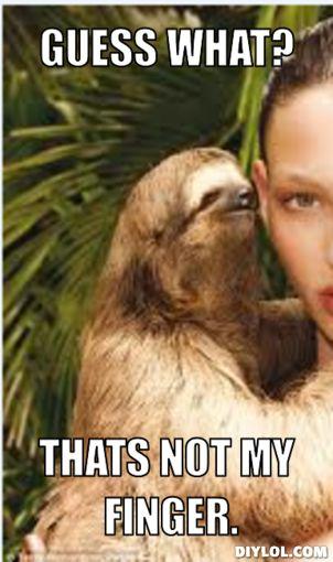 rape sloth meme jalapeno - photo #21