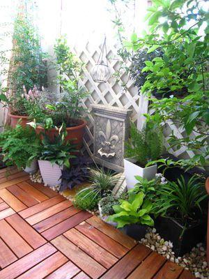 ベランダガーデニング! 長崎の無名のガーデナーの庭ブログ ...: