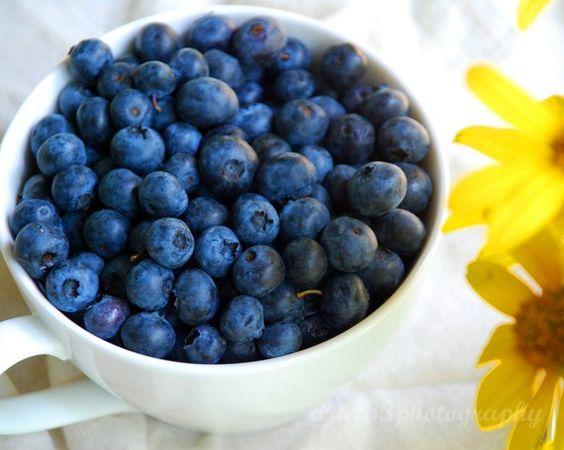 yellow+navy blueberries print