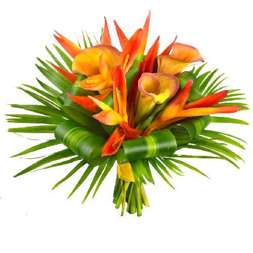 Eldorado bouquet de mari e un bouquet de mari e aux for Bouquet de fleurs pour un malade