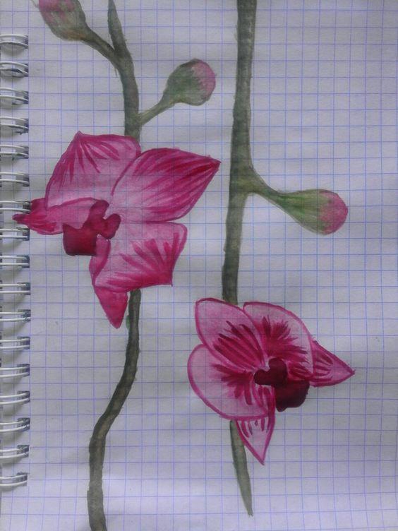 #aquarelle #paint #scketchbook #artbook #ideas