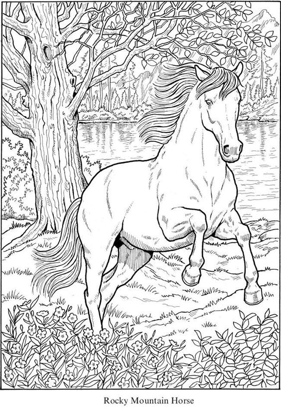 Coloring Pages Of Horses Rocky Mountain Horse From Creative Haven Great Horses Horse Coloring Books Horse Coloring Pages Horse Coloring