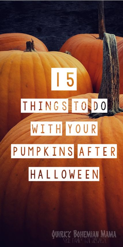 15 Ways to Recycle Your Pumpkins After Halloween, 15 Things To Do with Your Leftover Pumpkins, How to Recycle a pumpkin.