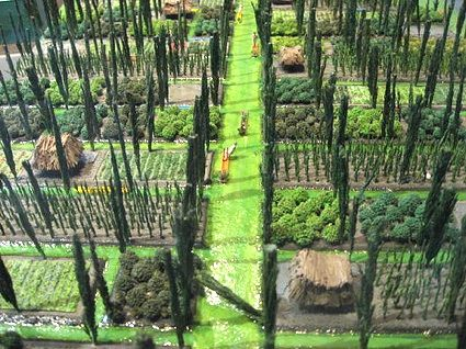 Floating Gardens Of Xochimilco In Mexico City Ckla Pinterest Jardins L Gumes Et Potager