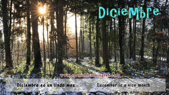 Y llegamos al último mes del año, Diciembre... Esperamos les haya gustado esta serie de imágenes de los meses del año. Todas ellas son parte de un video. Thanks for your support!  http://www.spanishlearninglab.com/spanish-months-of-the-year/