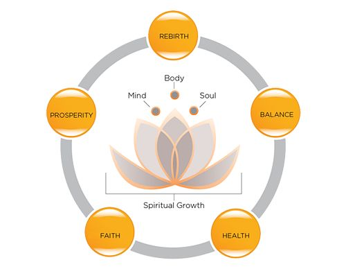 Meaning of the lotus flower the symbol of serenity now random meaning of the lotus flower the symbol of serenity now random inspo pinterest lotus flower serenity and lotus mightylinksfo