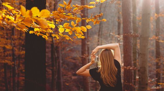 "autumntiming: ""  forest of nostalgia by Rona Keller on Flickr. "":"