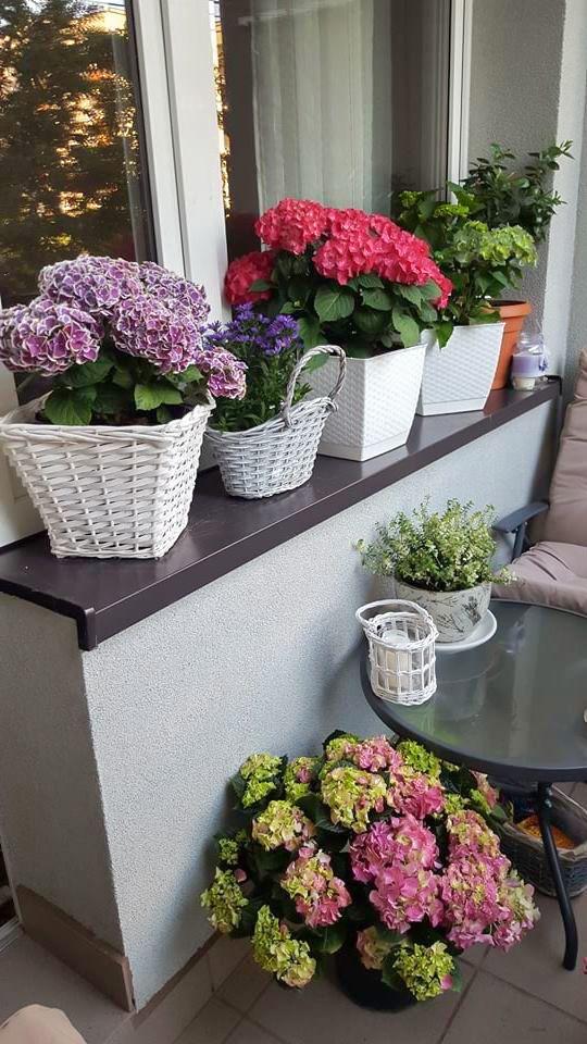 Wasze Balkony I Tarasy 2017 Inspiracje Moje Wlasne Small Balcony Decor House Plants Decor Balcony Decor