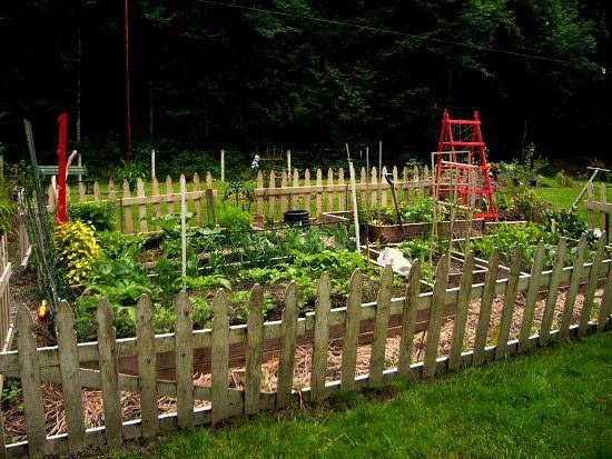 Garden Fencing Fence Design And Inspiration On Pinterest