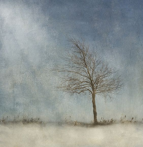 little voice by jamie heiden