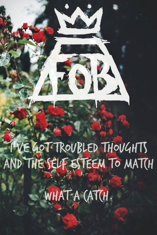 What A Catch Donnie - Fall Out Boy