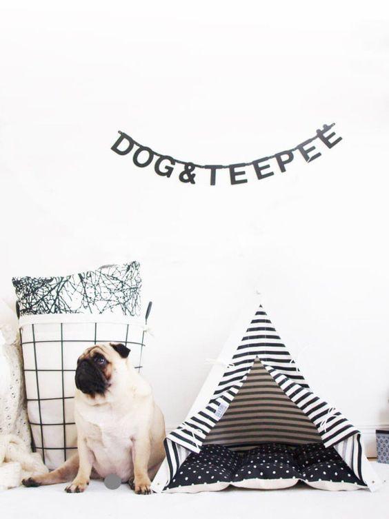 """Seu bichinho precisa desse espaço e sua casa pode se favorecer de """"lares"""" cheios de estilo, dando um toque especial na decoração."""