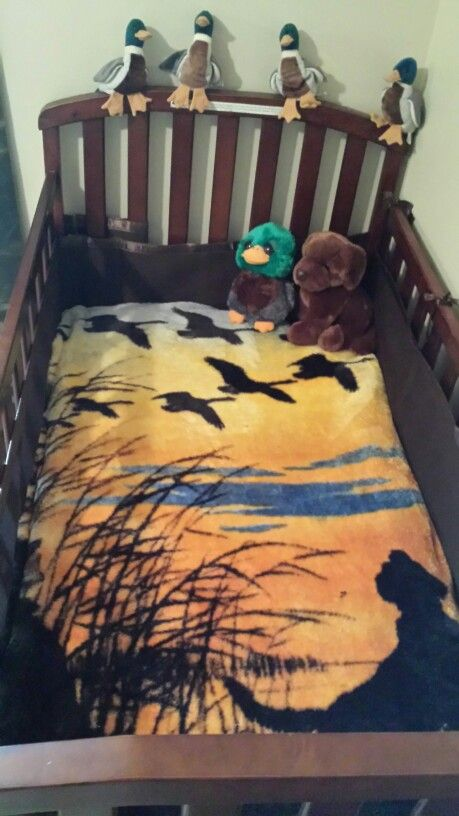Duck hunting theme for the baby's room :)