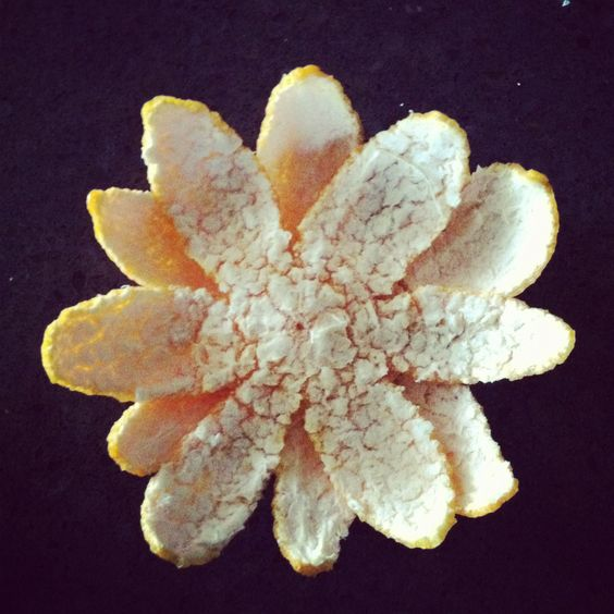 Made my orange peels into a flower. Yeah I know it's not that exciting but I still accomplished it. Still counts!!!