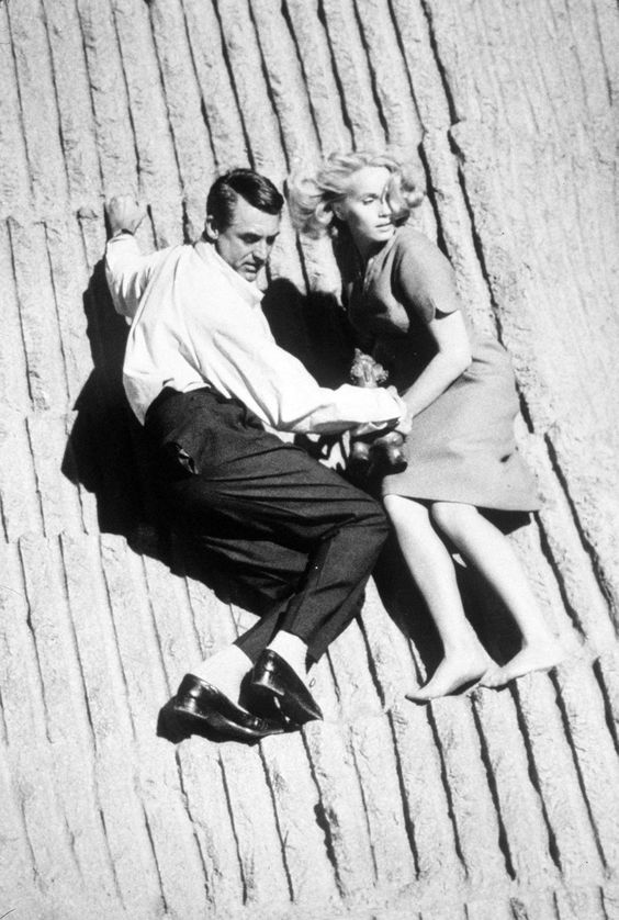 '50's action/adventure + Cary Grant = love.