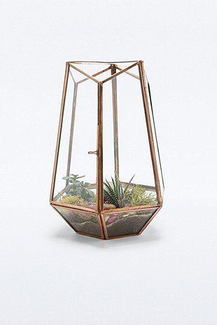 Urban Grow - Terrarium en cuivre ouvert sur le dessus
