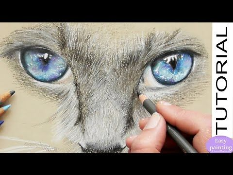 Pin On Cat Painting