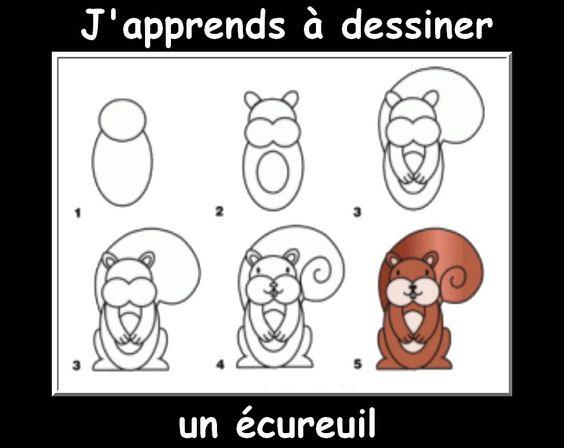 Des fiches j 39 apprends dessiner les animaux dessiner - Ecureuil a dessiner ...