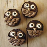 owl cupcakes! Loooks like Chocolate M's and pieces of candy bar for the beak...fun!  #owl #cupcake