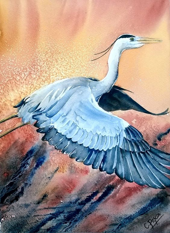 Grey Heron - Original Watercolour painting by CPascoeWatercolours on Etsy