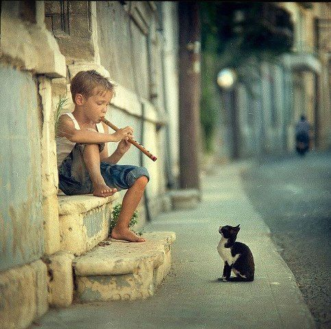 Young boy playing his flute for a kitten on the front stone steps of a house along a cobblestone street.