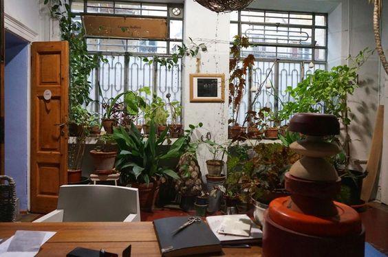 Nello studio di Antonio Perazzi: seduti alla sua scrivania le piante diventano punto focale del suo ufficio milanese.