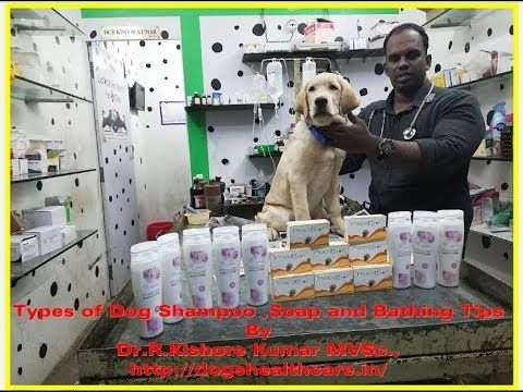 Dogshampoo Types Of Dog Shampoo Soap And Bathing Tips Puppy