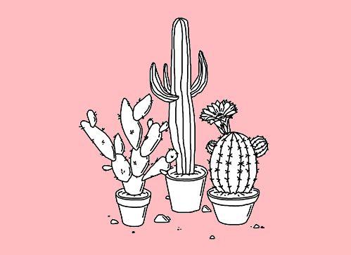 https://www.tumblr.com/dashboard | pink | Pinterest ...