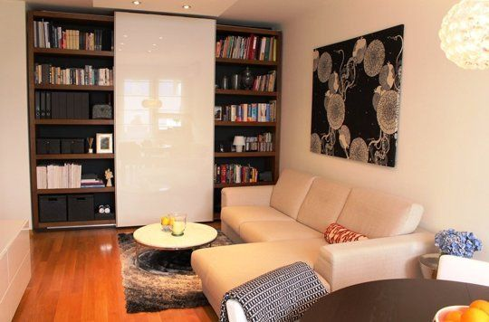 Small Space Living Ideas from a 540 Square Feet Apartment — Professional Project