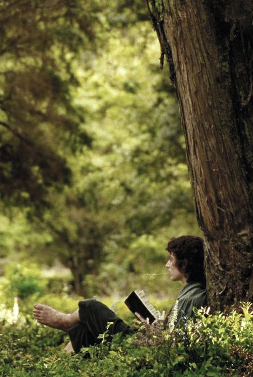 • Frodo •  This pretty much what I'd be doing everyday if I lived in The Shire.: